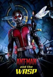 Karınca Adam ve Eşek Arısı