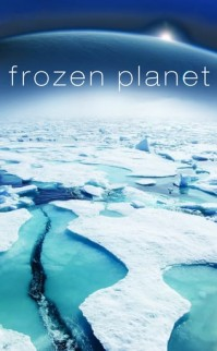 Frozen Planet – Kutuplar Atlası