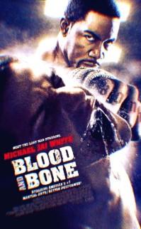 Kan Ve Kemik – Blood And Bone Türkçe Dublaj 720P İzle